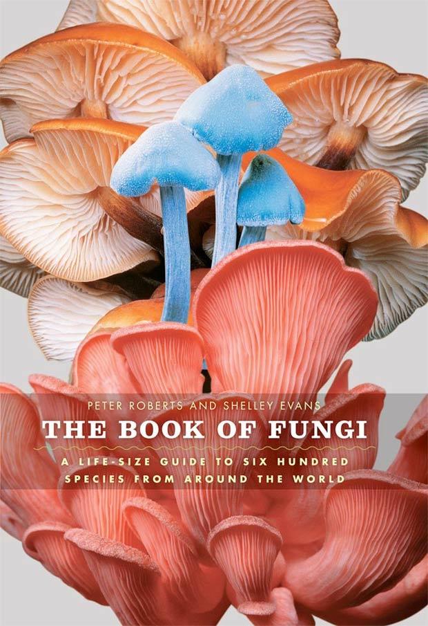 The Book of Fungi 1